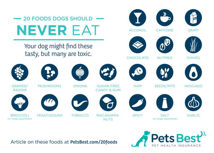 20 Foods Dogs Should Never Eat - Infographic from www.petsbest.com.