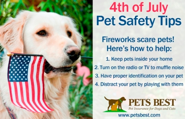 4th of July tips to keep dogs and cats safe.