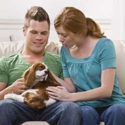 A cute couple sits with a dog on their laps.