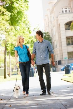 A couple walk their dog who has pet insurance.