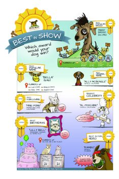 A colorful cartoon dog infographic.