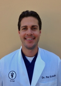 My Vet's the Best finalist Dr. Pat Echolds of Rancho Niguel Animal Hospital in Laguna Niguel, California.