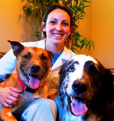 Veterinarian Dr. Katie Buss is the winner of the national My Vet's the Best contest.