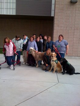Students pose with a mini-horse and therapy dogs.