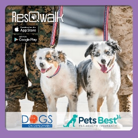 Pets Best teams up with ResQwalk to raise money for Dogs on Deployment.