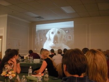 The Pets Best Insurance team watches a short film at SNIP's event.