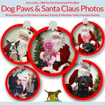 Dogs insured with Pets Best pose with Santa.