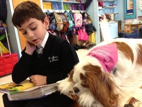 2016 Books & Barks contest finalist, Sydney, and the students she reads to at St. Martin de Porres School in Poughkeepsie, New York.