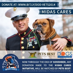 United States Marine Sgt. Juan Valdez and Dogs on Deployment mascot, Midas.
