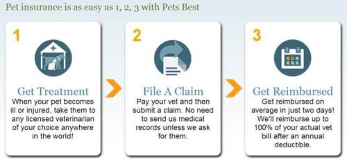 Pet insurance in three simple steps