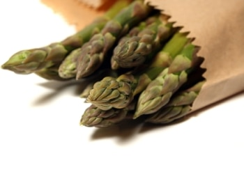 Will Asparagus Dissolve Dog Bladder Stones and Crystals?