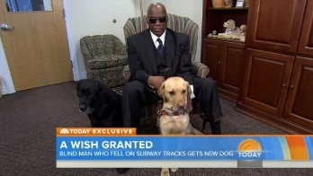 Williams sits down with his dog Orlando and his new dog, a yellow Labrador named Godiva.