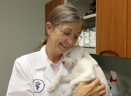 Dr. Campbell is a pet health insurance contest finalist.