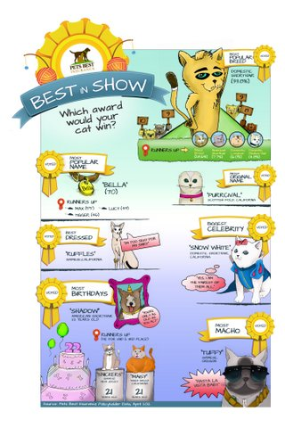 A cat cartoon made from fun Pets Best Insurance customer data.