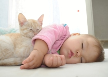A baby and kitten, with Pets Best Pet Insurance, take a nap together.