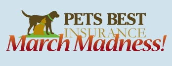 March madness Pets Best.