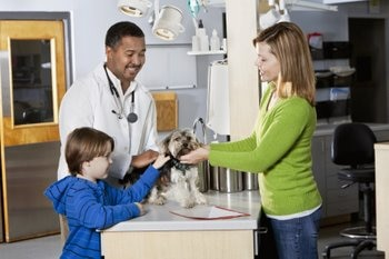 A mother and child take their dog with pet insurance to the vet.
