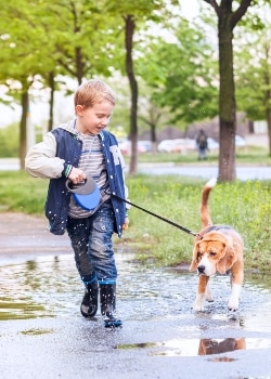 A little boy and a dog with dog insurance walks through a mud puddle.
