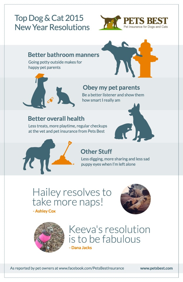 New Years Resolutions - Infographic from www.petsbest.com.