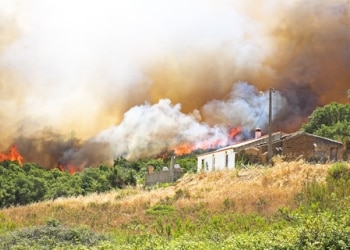 Wildfires spread fast and can threaten homes and the humans and pets inside.
