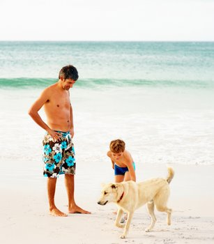 A family with California pet insurance play at the beach.