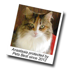 Anastasia has been protected by Pets Best cat insurance since 2012