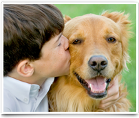 Care for your pet with pet insurance